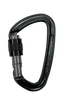Flashed Screwgate Carabiner