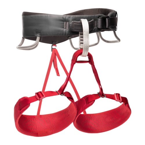 Black Diamond Momentum Harness Wild Rose Online at Mountain Mail Order South Africa