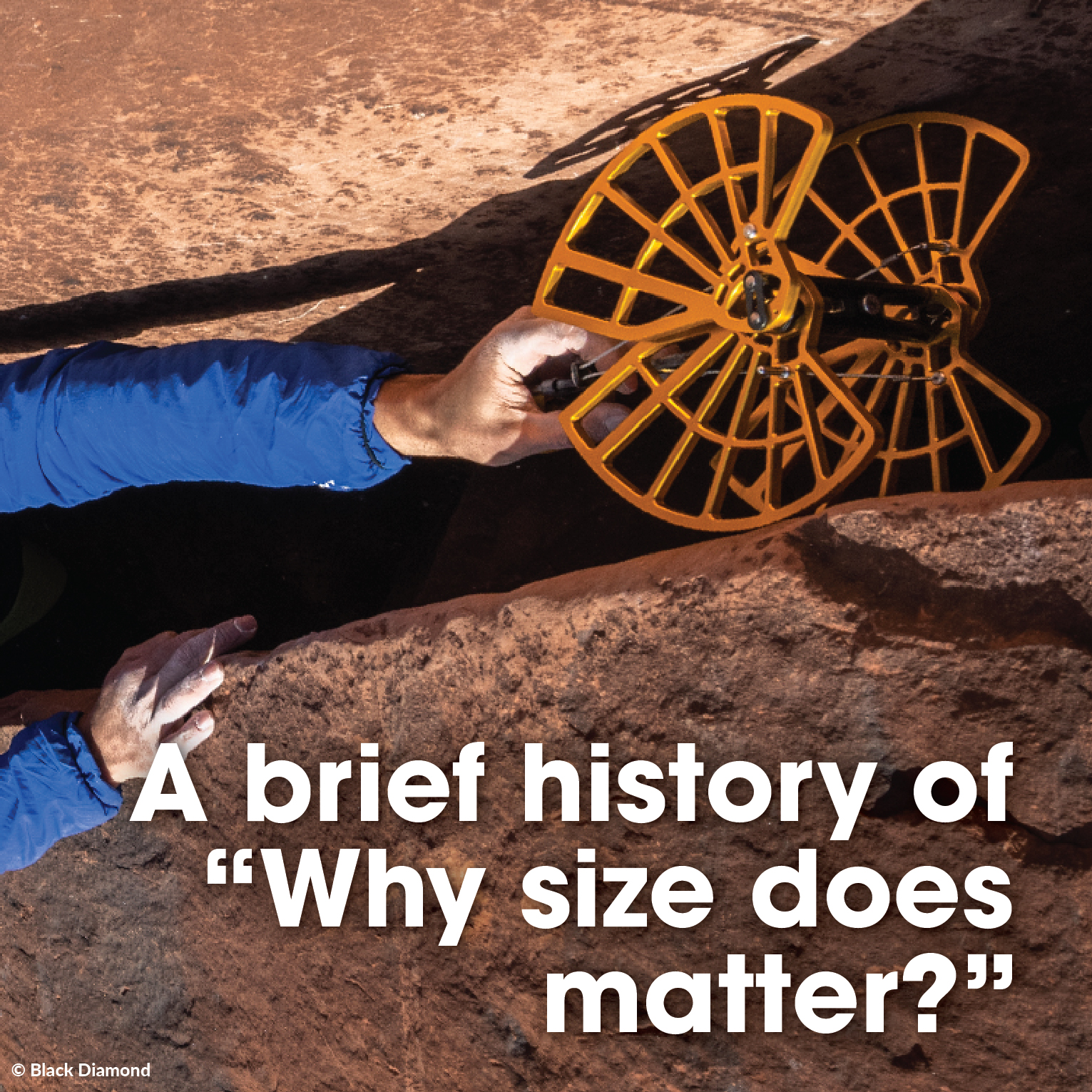 "A brief history of, ""Why size does matter?"""