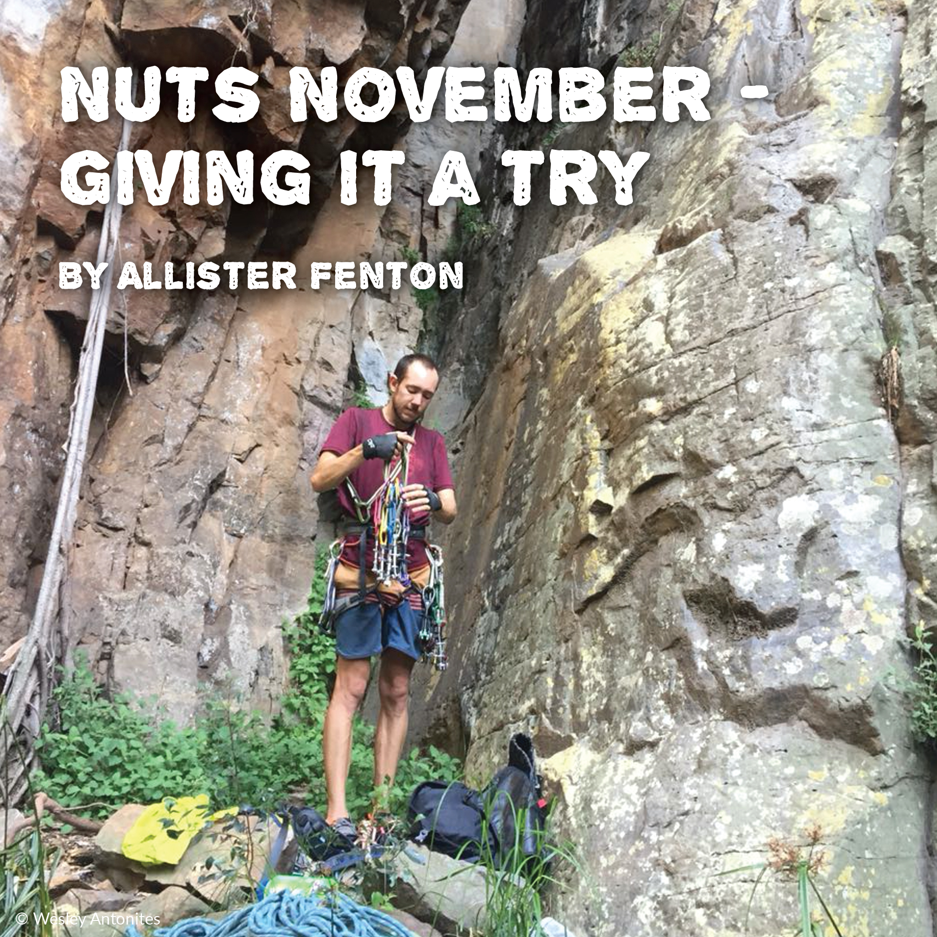 Nuts November - Giving it a try