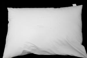 Pillow, Waterproof, 46cm x 70cm, Each