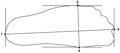 foot-measurement1.jpg