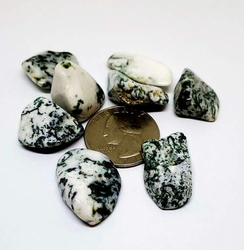 Tree Agate, tumbled, 1 oz