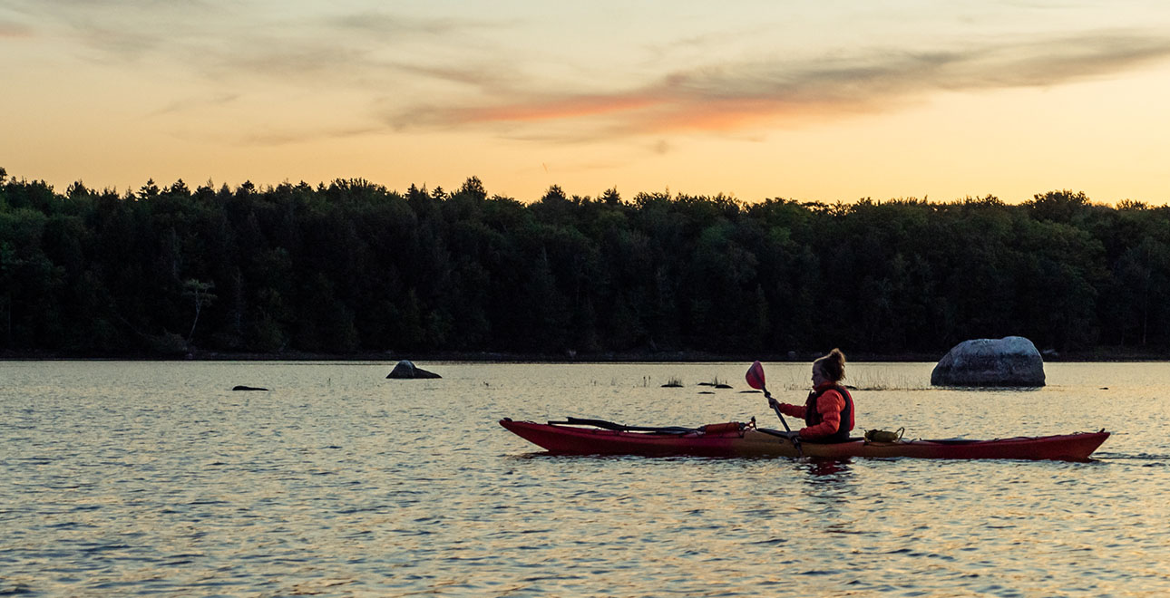 Kayaks and SUPs