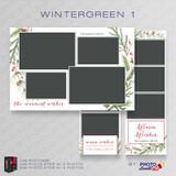 Wintergreen 1 Bundle - CI Creative