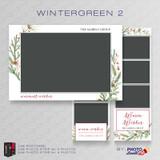 Wintergreen 2 Bundle - CI Creative