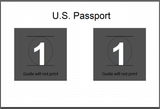 Passport Template for Darkroom Core Edition