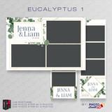 Eucalyptus 1 Bundle - CI Creative