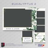 Eucalyptus 2 Bundle - CI Creative