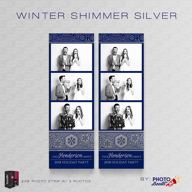 Winter Shimmer Silver 2x6 3 Images - CI Creative