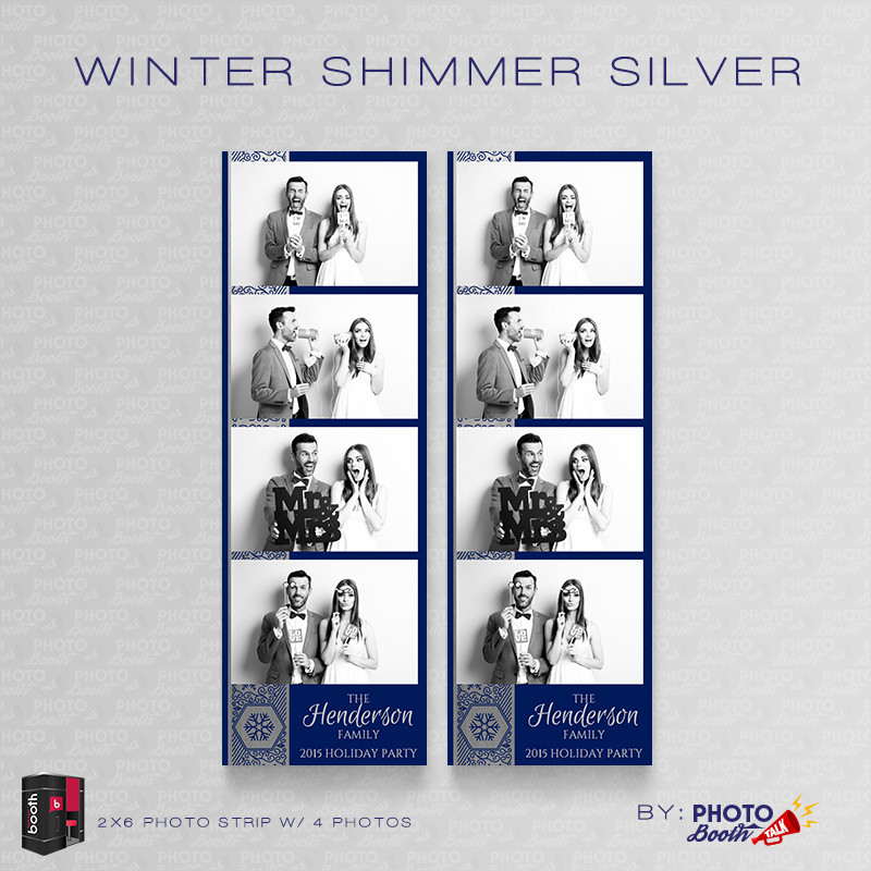 Winter Shimmer Silver 2x6 4 Images - CI Creative