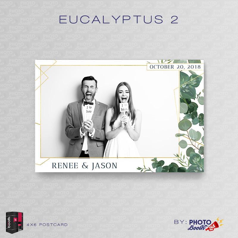 Eucalyptus 2 4x6 Single Photo - CI Creative