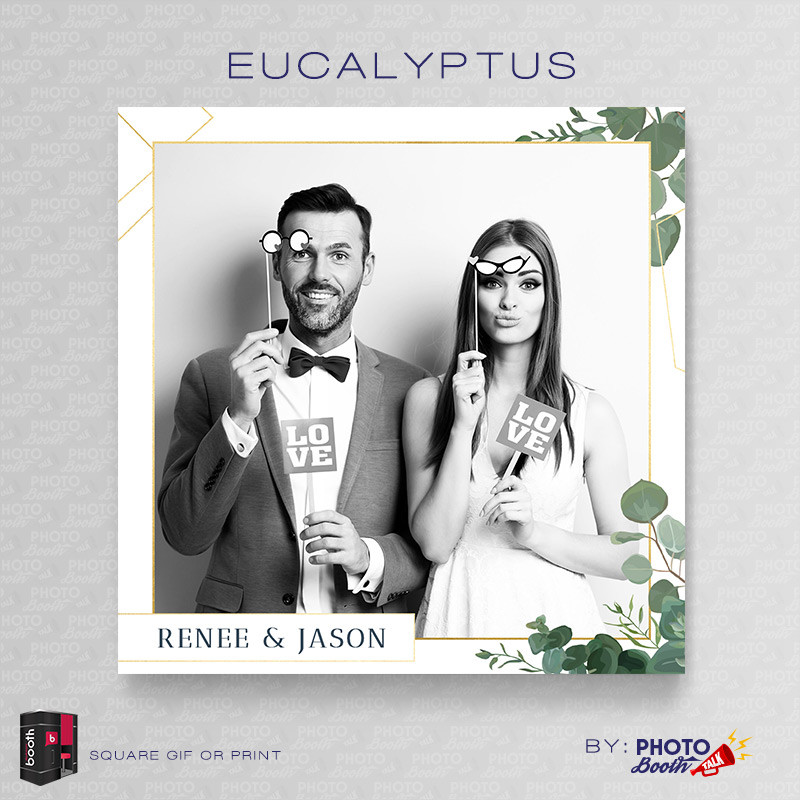 Eucalyptus Square - CI Creative