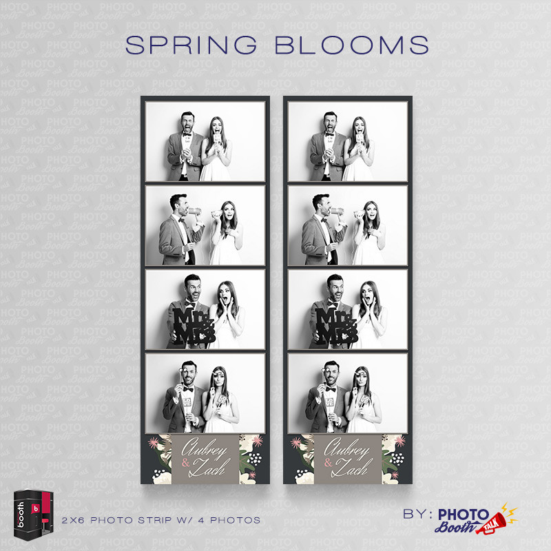 Spring Blooms 2x6 4 Images - CI Creative