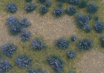 Flowering Violet Meadow
