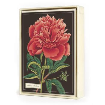 Boxed Notecards, Botany