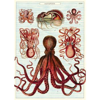 Cavallini Paper, Octopods 20x28