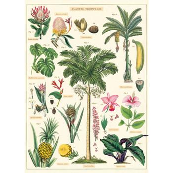 Cavallini Paper, Tropical Plants 20x28
