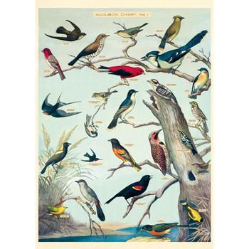 Cavallini Paper, Audubon Birds