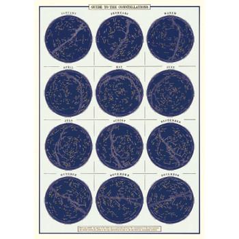 Cavallini Paper, Constellations 20x28