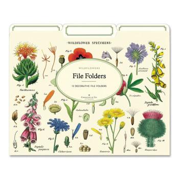 File Folders Set, Wildflowers