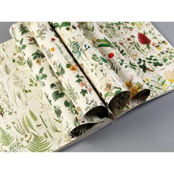Creative Paper Book, Flora