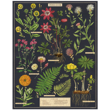 Jigsaw Puzzle, Herbarium