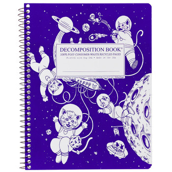 Decomposition Book Kittens in Space