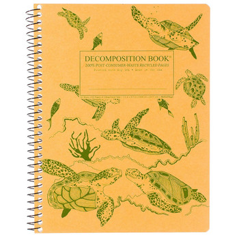 Decomposition Book Sea Turtles