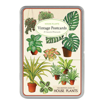 Vintage Postcards, House Plants