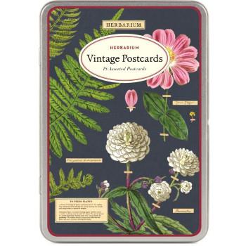 Vintage Postcards, Herbarium