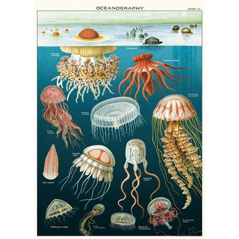 Cavallini Paper, Jellyfish