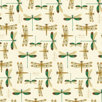 Rossi 1931 Decorative Paper, Dragonflies