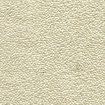 Black Ink Paper, Embossed Pebbles-Pearlized Champagne