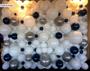 Organic Balloon Wall 8