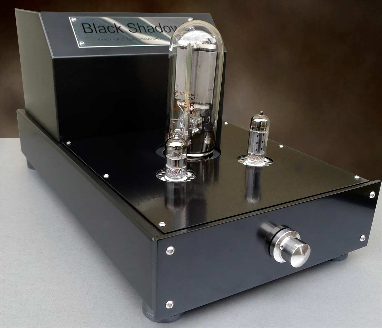 Audion Black Shadow 2 Mkll 845 Hard Wired Mono Block Now at True Audiophile.