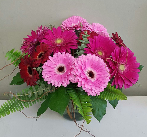 Gerbera by the Dozen