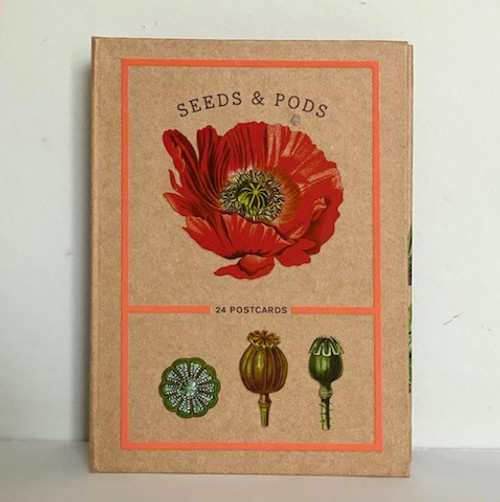 Seeds & Pods  24 Postcards
