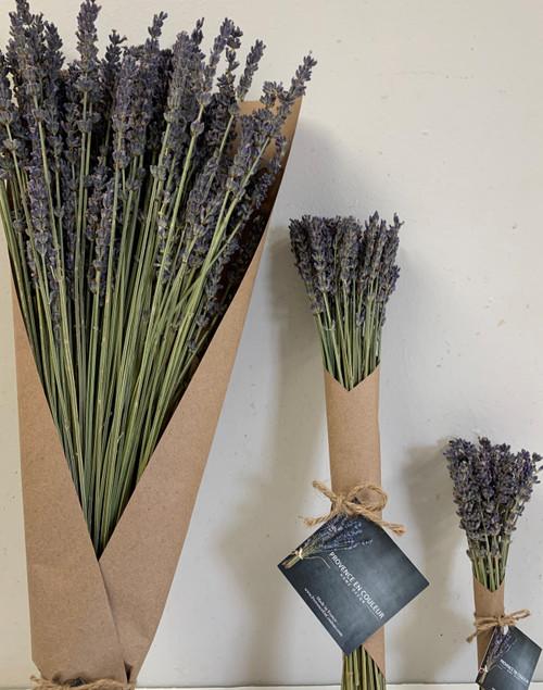 Lavender from France ( medium)
