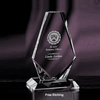 Manhattan Crystal  Award   Army Regulation Awards!