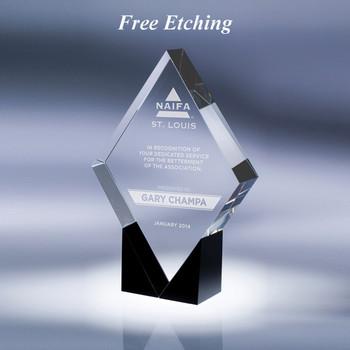 Paradigm Crystal Award