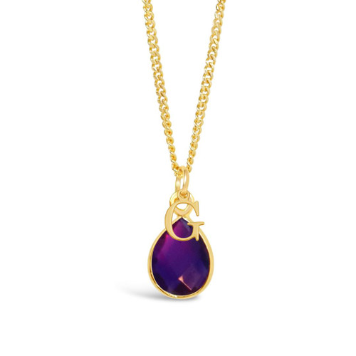Amethyst Charm Necklace | Gold / February