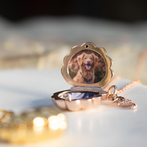 rose gold shell locket with rose gold seahorse charm and one photo fitted inside