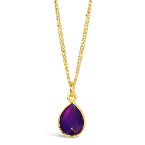 Amethyst Charm Necklace   Gold / February