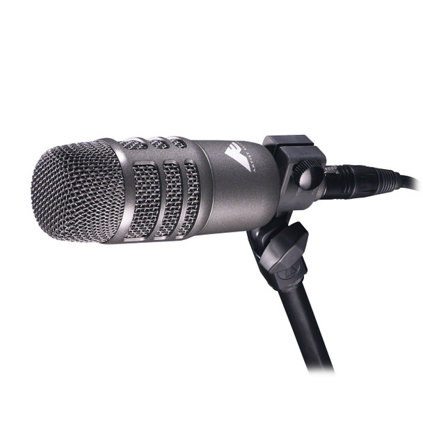 AE2500 Cardioid Condenser and Dynamic Dual-Element Instrument Microphone