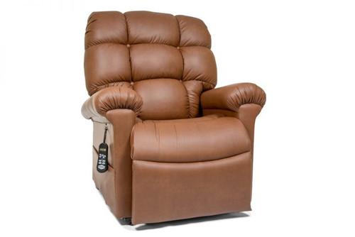 Golden Cloud Medium/Large Lift Chair - Bridle