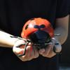 red ceramic ladybug gift ideas, unusual ceramic gift ideas