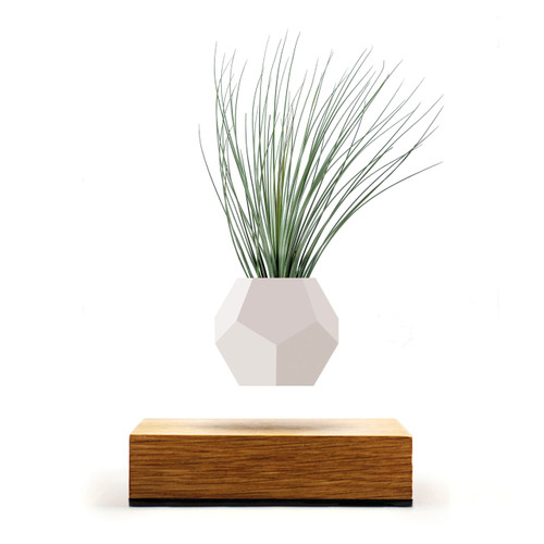 flyte lyfe levitating  geodesic planter oak base silicone design sweden