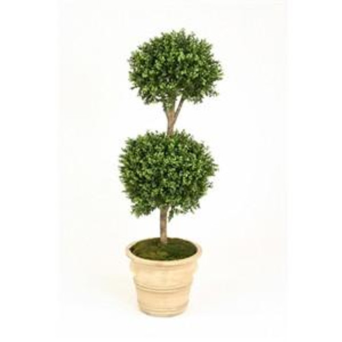 Double Boxwood Topiary in Classic  Urn