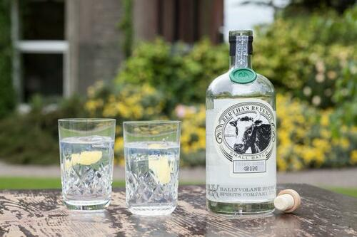 Bertha's Revenge Irish Milk Gin (Small Batch)